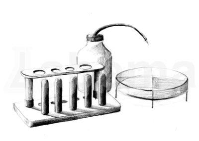Plastiki laboratoryjne